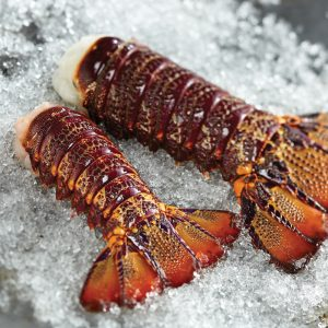 New Zealand Lobster Tails