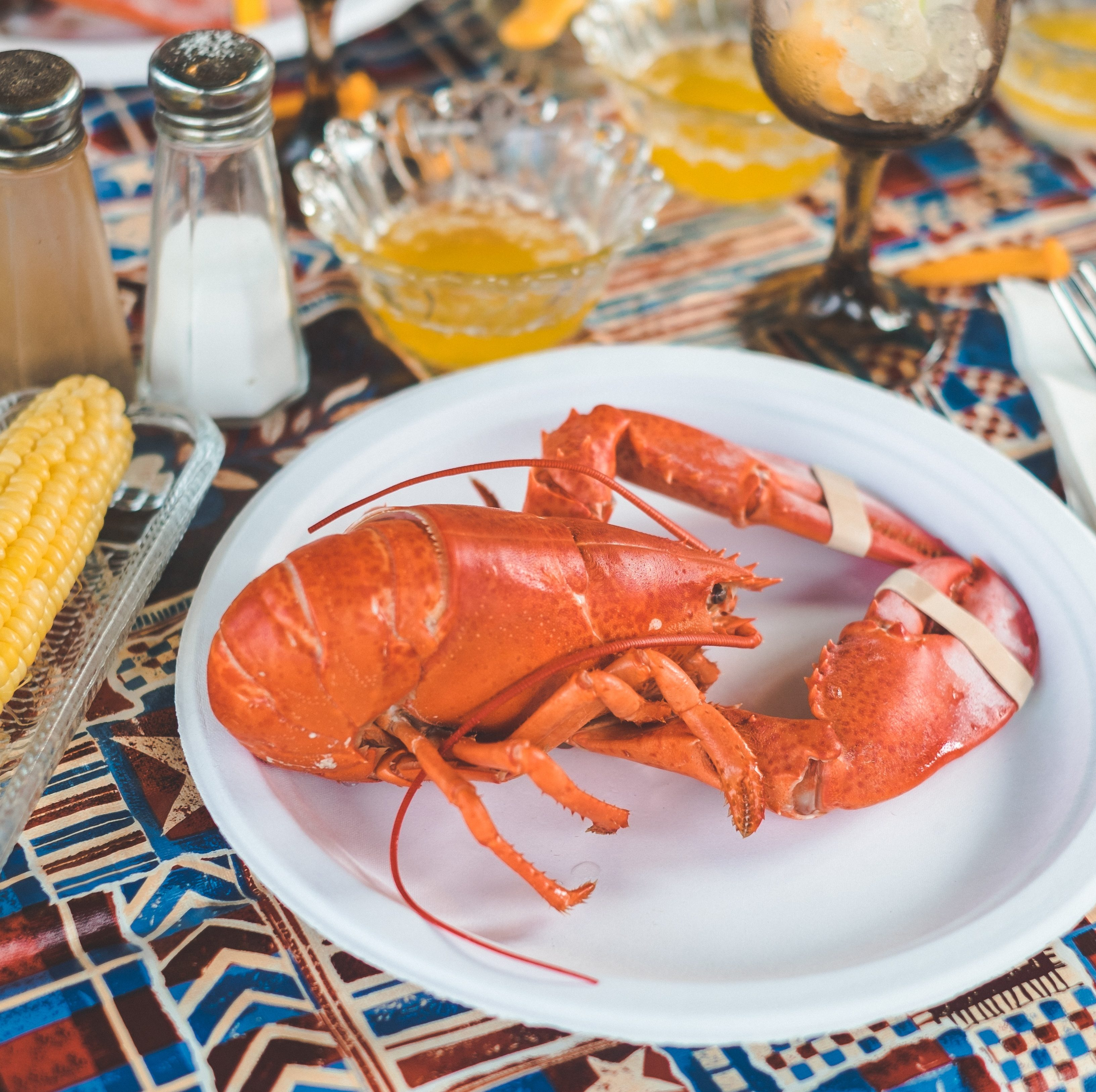 lobster on plate with tablespread of corn on the cob and drinks