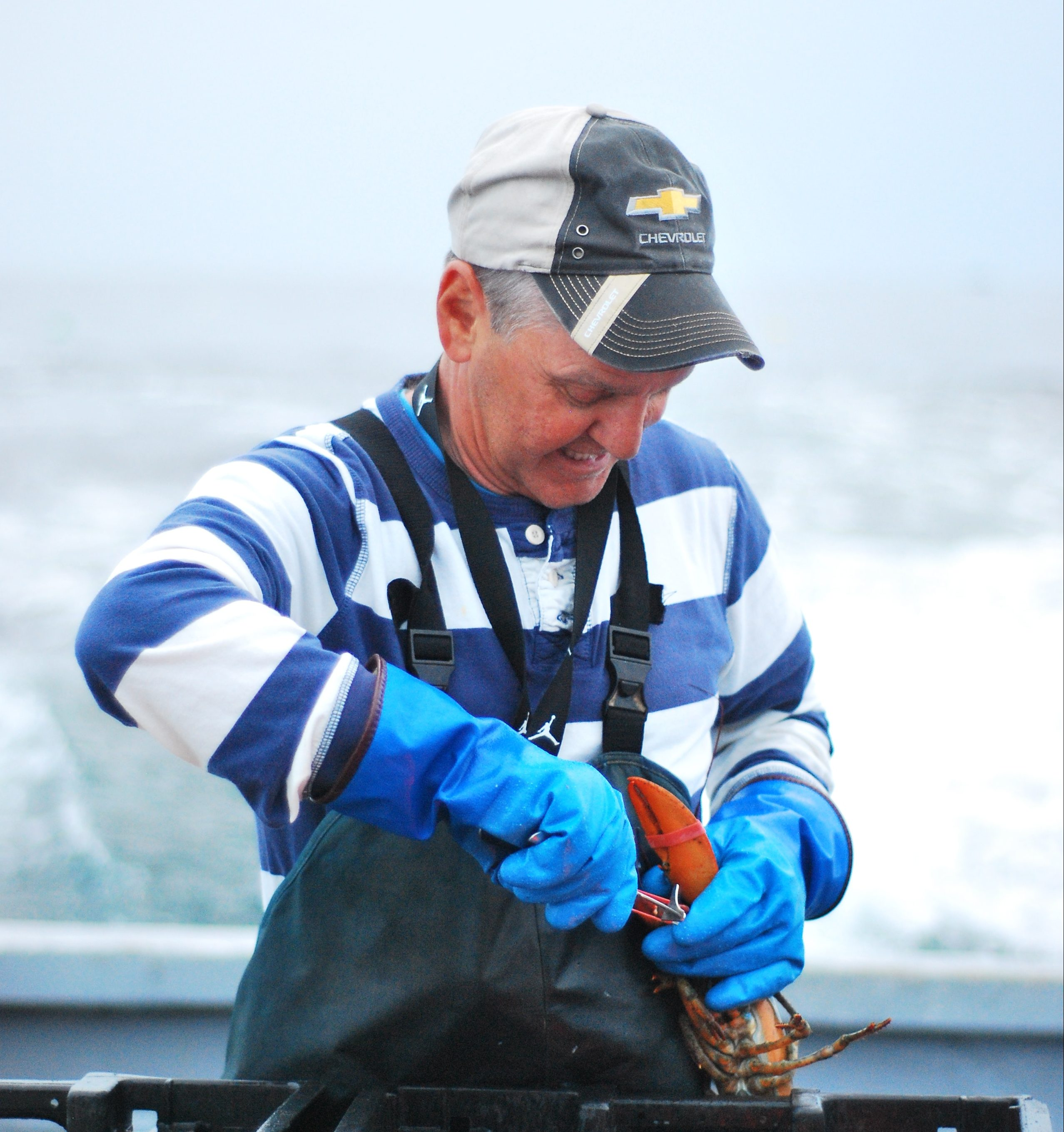 fisherman clamping lobster claws